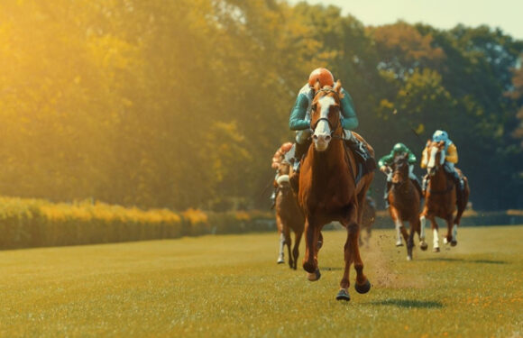 What Betting Systems Are Used In Horse Racing?