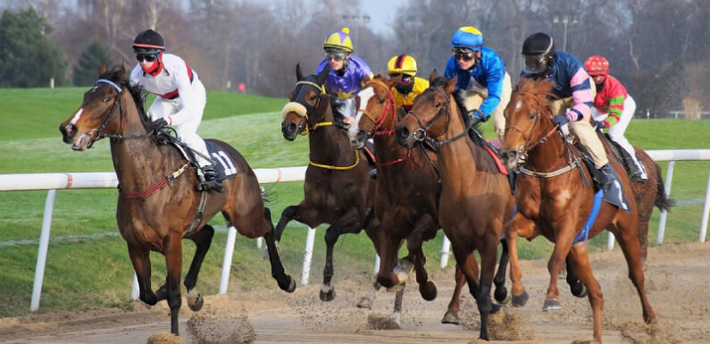Top horse racing events across the globe