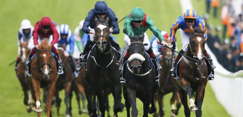 Interesting Facts About Horse Racing