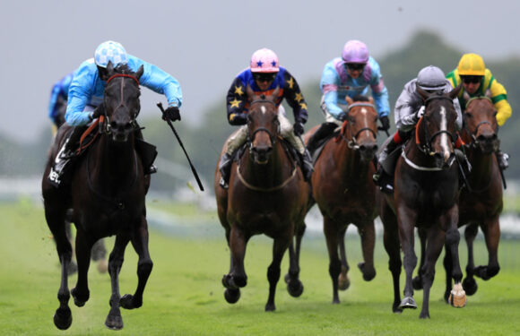 Horse Racing, A Popular Sports Across The Globe