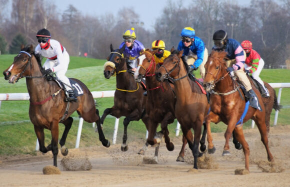 Horse Racing – A Great Sporting Event